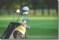 courier golf luggage