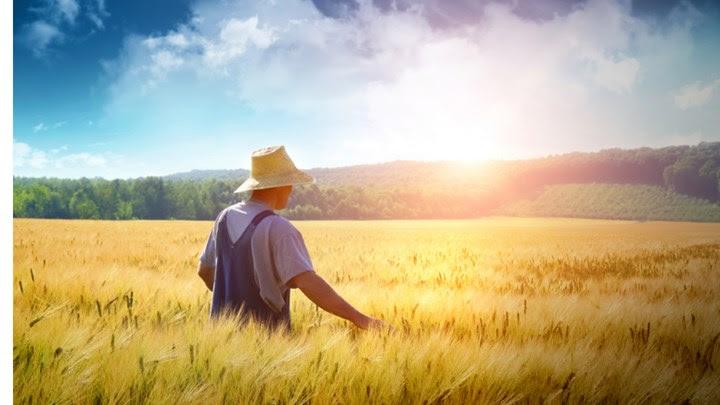 Ποια εισοδήματα δεν θα συνυπολογίζονται για τις ανάγκες εγγραφής στο Μητρώο Αγροτών