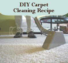 photo DIYCarpetCleaningRecipe.jpg