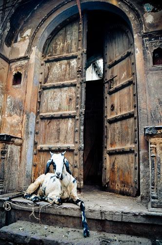 DelhiPartB-16