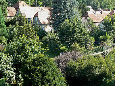 le jardin de wissembourg.jpg