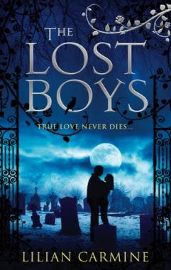 http://queridoescritor.blogspot.com.br/2014/03/resenha-lost-boys-o-verdadeiro-amor.html
