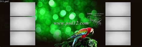 Photoshop Backgrounds: 48 Karizma Photo Album PSD Template