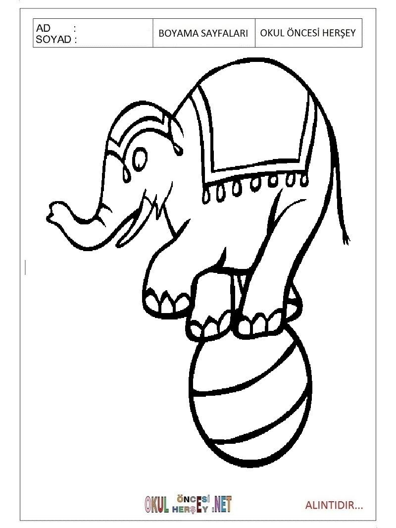 Sirk Hayvanları Boyama Sayfaları