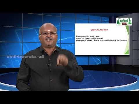 ஆய்வுக் கூடம் Std 8 Science நுண்ணுயிரிகள் Part 02  Kalvi TV