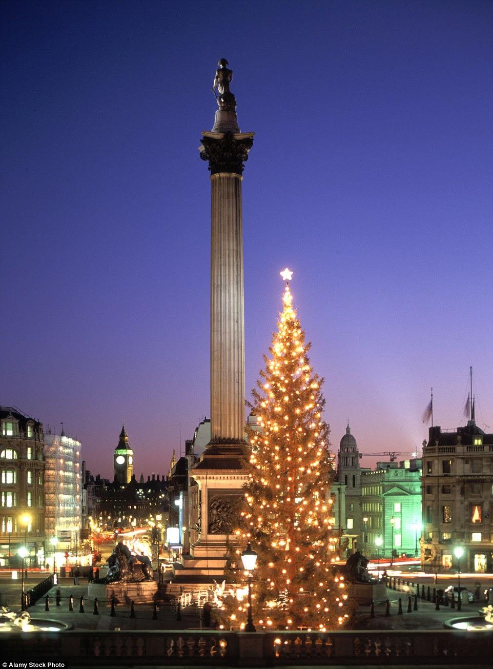 Árvore de Natal tradicional norueguesa impressionante da Trafalgar Square foi doado por Oslo, na Noruega para o povo de Londres