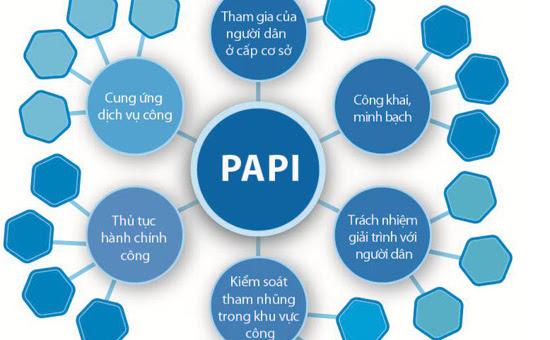 PAPI, cải cách hành chính, tham nhũng