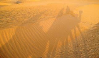 Wydmy na Saharze, Mauretania, Afryka