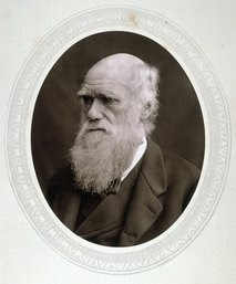 Darwin's travels may have led to illness, death - Yahoo! News
