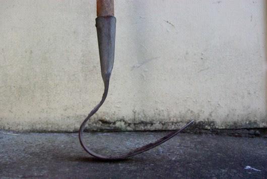 Vintage gardening tool - the long-handle single prong weeder