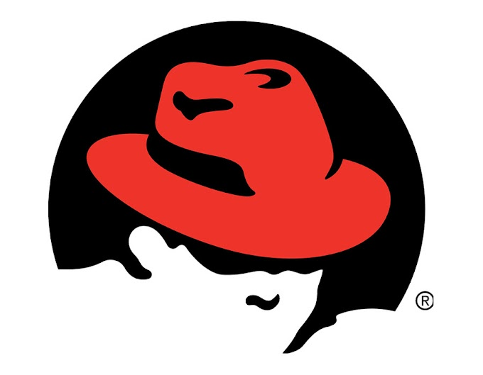 New Year, new Red Hat Enterprise Linux packages: Easier methods to entry RHEL