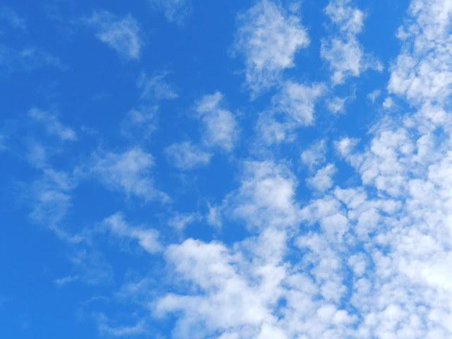 skywatchDSCN5433