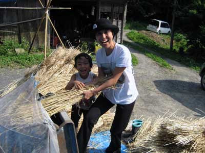 Harvest  JPG