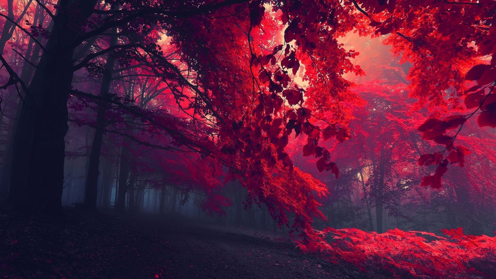 20+ Inspiration Background Wallpaper Hd 1080p 1920x1080 For Pc