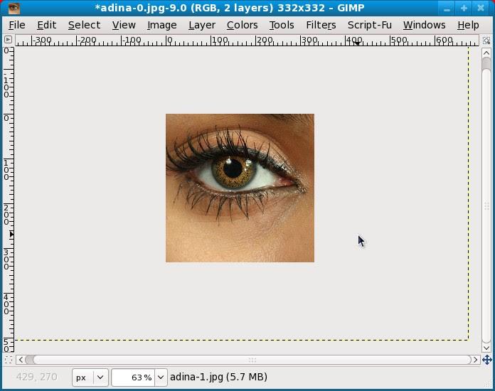 box of eyes