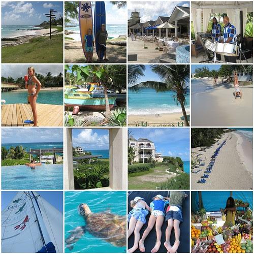 Barbados Blue mosaic