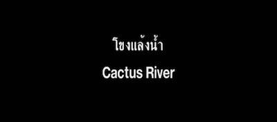 Cactus River