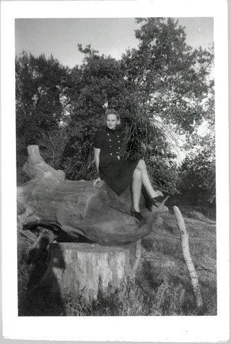 Girl on a tree stump