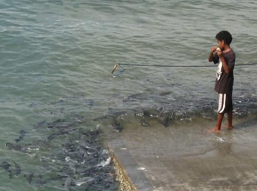 boy fish
