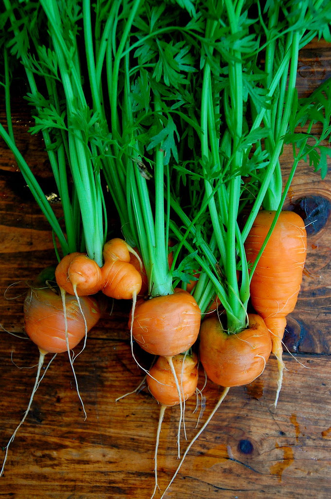 parisian carrots