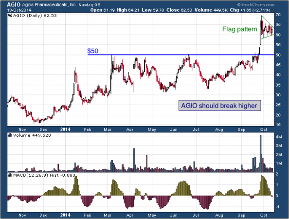 1-year chart of Agios (Nasdaq: AGIO)