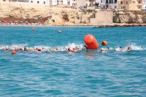 Snalsea - Nuoto acque libere