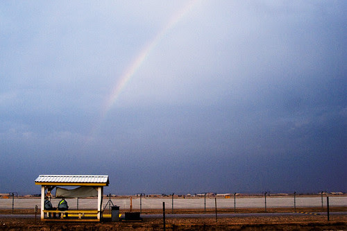 31.365_bus_stop_rainbow