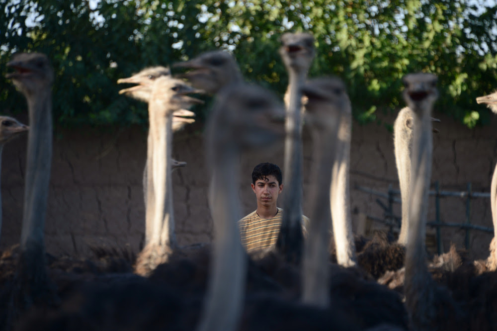 Интересные снимки из Афганистана