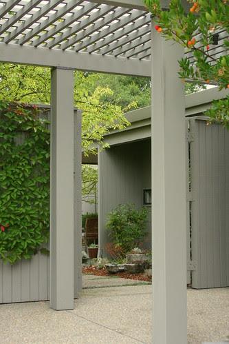 peekaboo garden