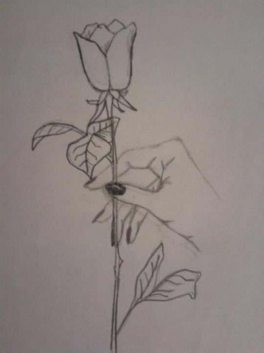 How To Draw A Rose In A Hand