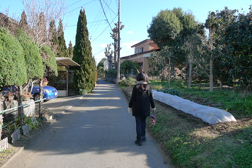 Walking through the Tsukui neighbourhood