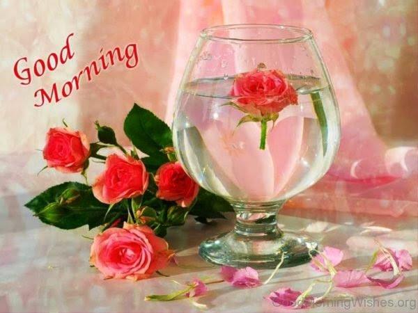 Lovely Images Good Morning Floweryred2com
