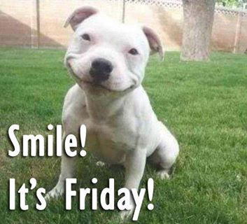 Smile It Is Friday Best Funny Good Friday Pics Good Morning Images
