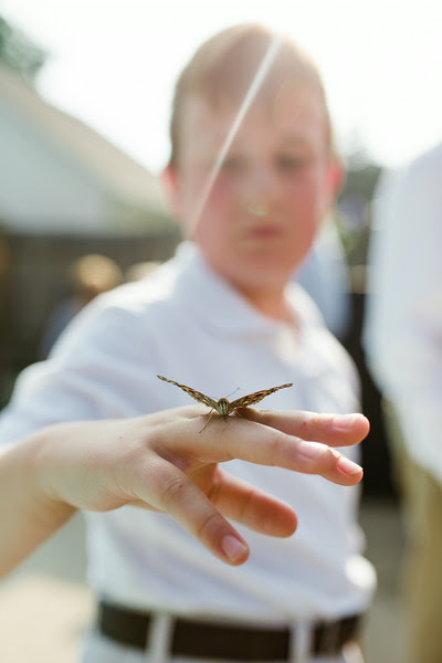 A butterfly release which followed an intimate backyard wedding ceremony in Rockford IL near Sinnissippi with close friends and family.