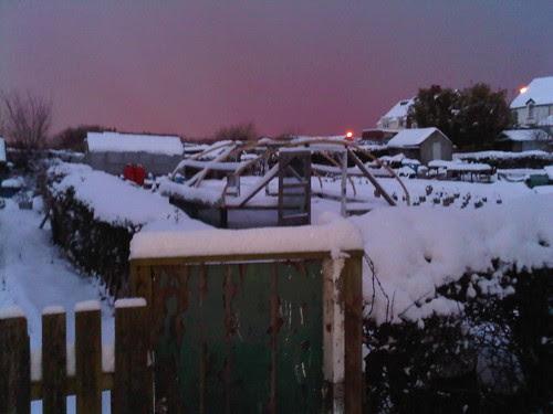 Allotment snow Jan 10 no 2