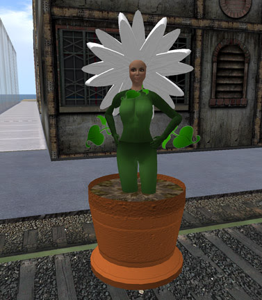 Flowery Cen