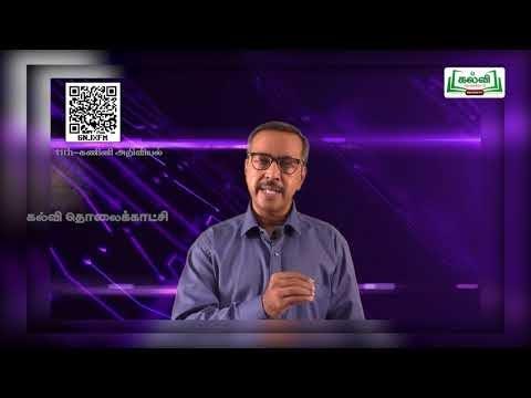 11th Computer Science எண் முறைகள் பாடம் 1 Kalvi TV