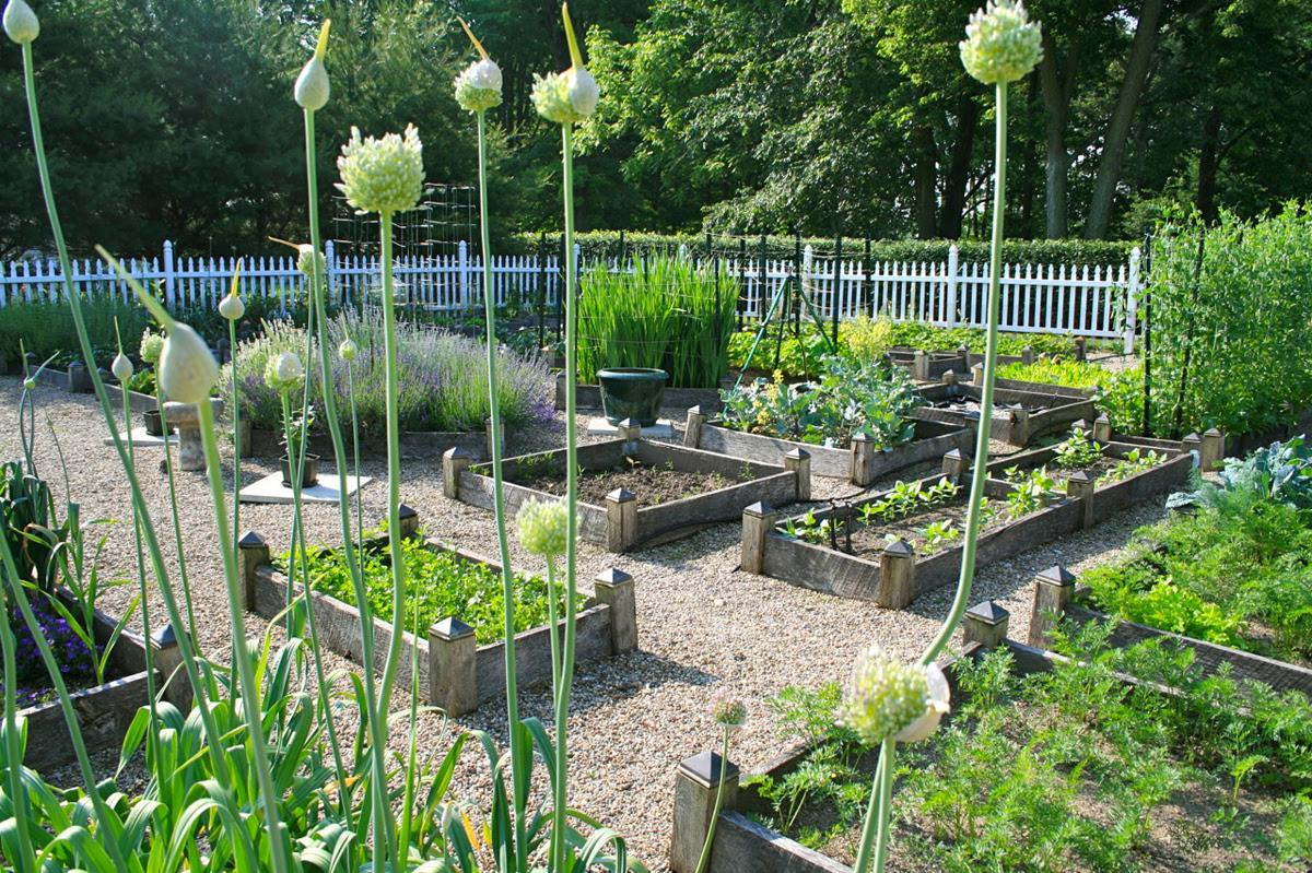 READER PHOTOS! Amy's garden in Ohio - FineGardening