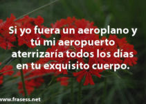 Frases De Amor Platonico