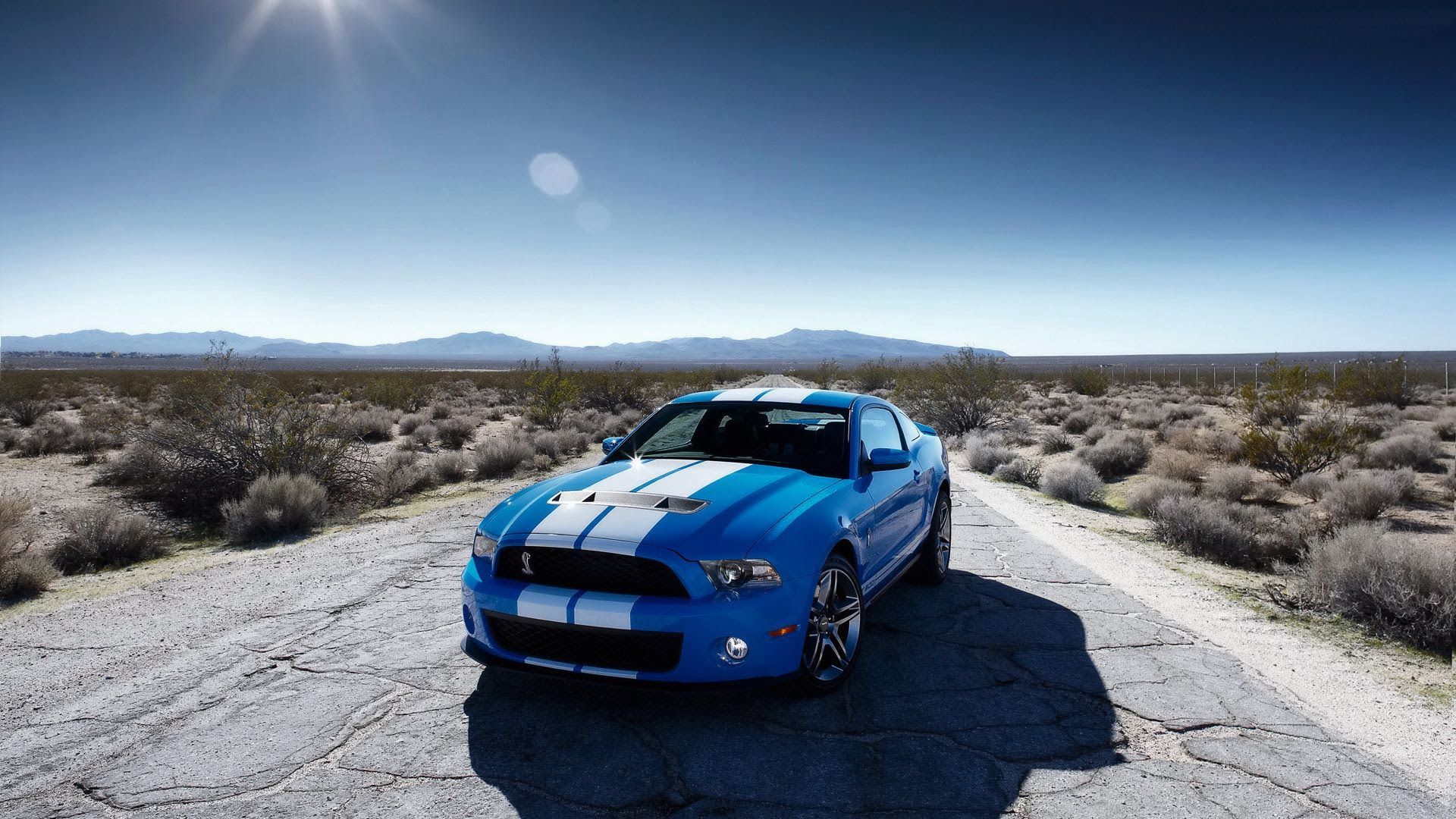 30 HD Mustang Wallpapers For Free Download
