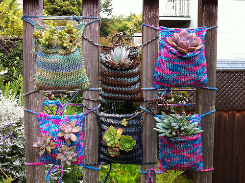 Knitted plant pockets yarnbombing guerilla knitting handmade graffiti succulents