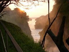 Top of murchison falls