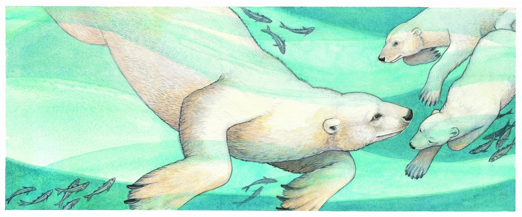 Wild About Bears Illustration © Jeannie Brett