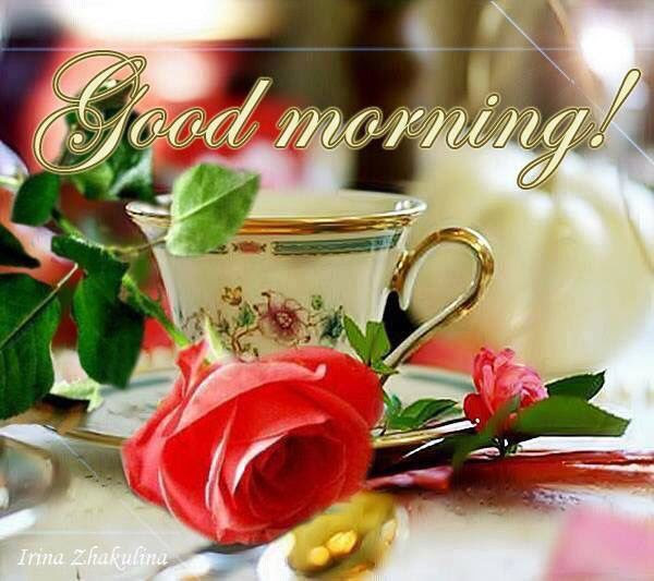 Good Morning Tea Cup And Rose Pictures Photos And Images For
