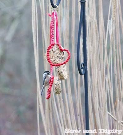 birdseed hearts and berries
