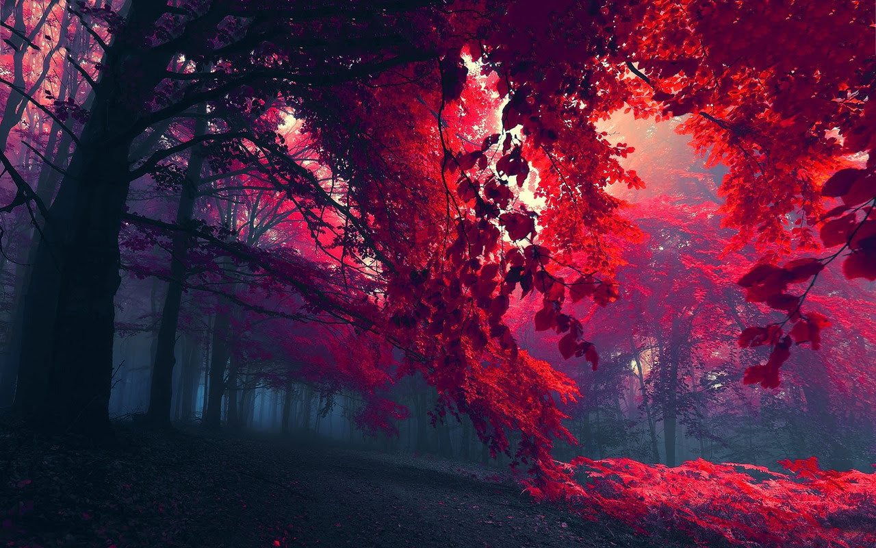 Space Wallpapers 1366 X 768 Autumn