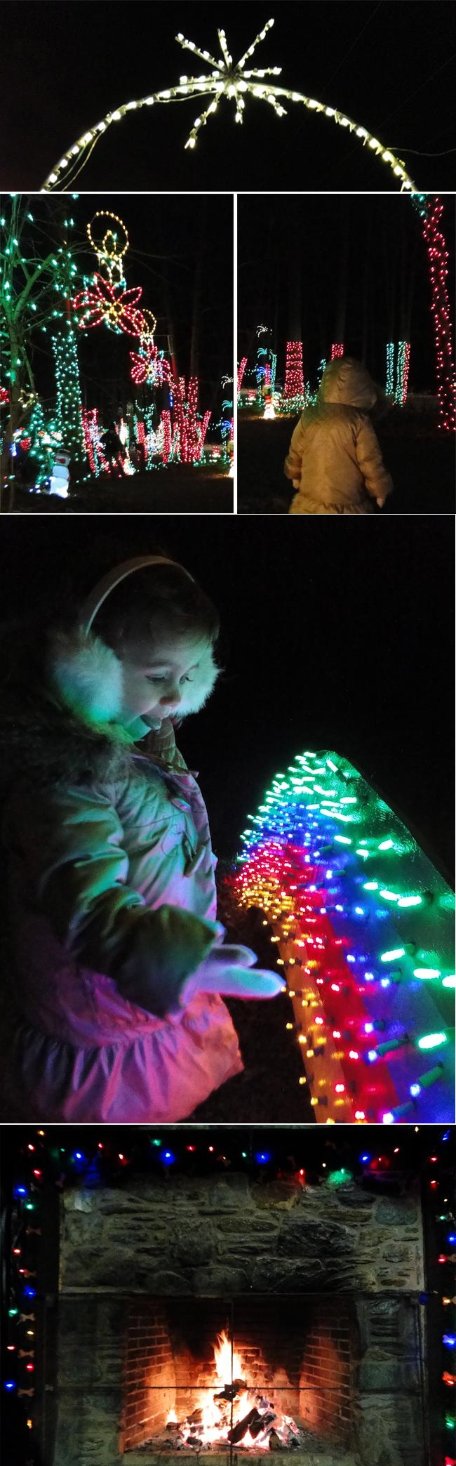 A-Lovely-Lark-Christmas-Lights-2012