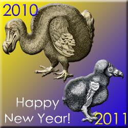 2011.01.01 New Years