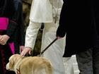 Papa 'abençoa' cão-guia em encontro com jornalistas no Vaticano
