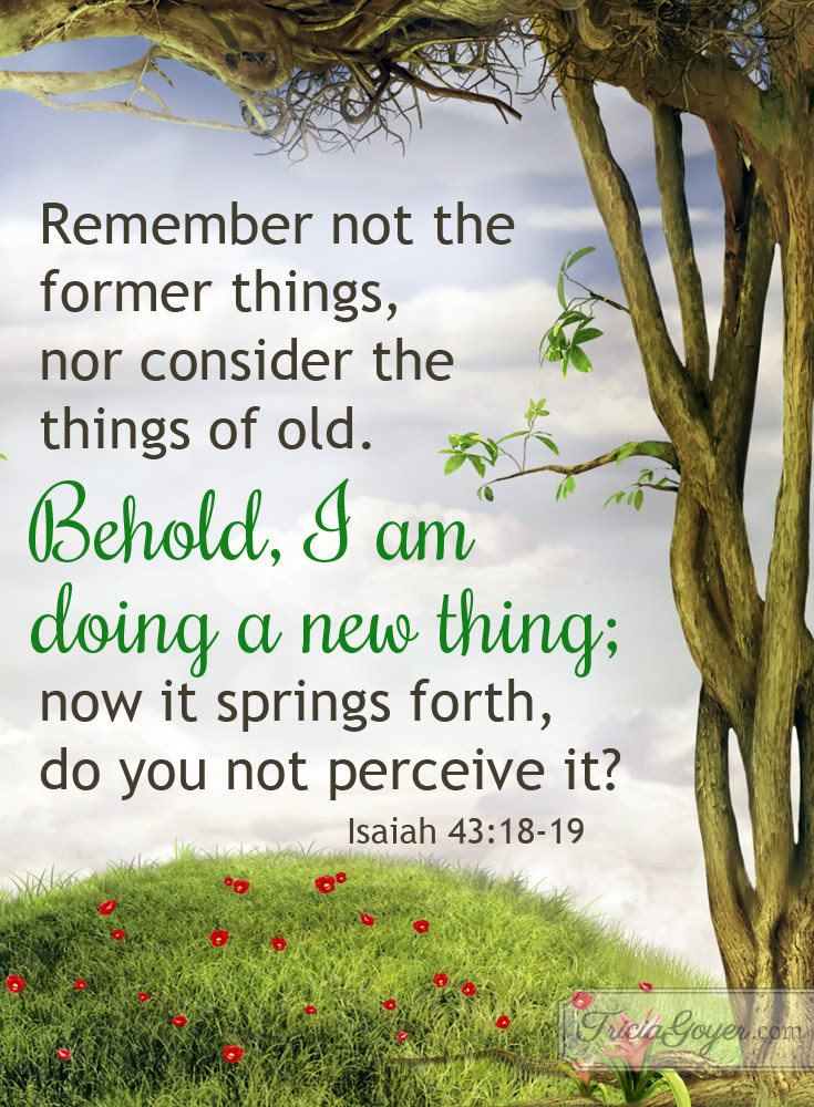 Image result for isaiah 43:18-19